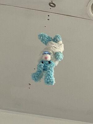 Untitled (Blue Bunny)