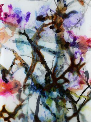 Ce que fait le printemps avec les cerisiers* Pablo Neruda, installation view