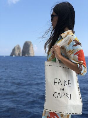 FAKE IN CAPRI, installation view