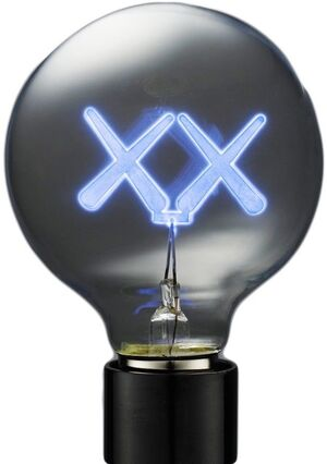 'XX' Lightbulbs For The Standard Hotel (Set of Three)