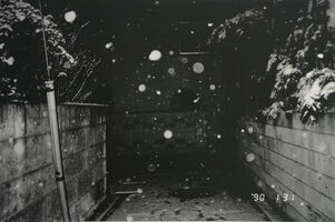 Nobuyoshi Araki, 'Sentimental journey, Winter Journey', 1990