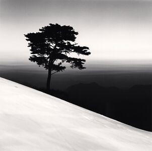 Michael Kenna, 'Mountain Tree, Danyang, Chungcheonbukdo', 2011