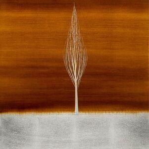 Hamilton Aguiar, 'Solitude Amber (17079)', 2017