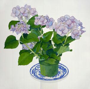 Gary Bukovnik, 'Lavender Hydrangea', 1994
