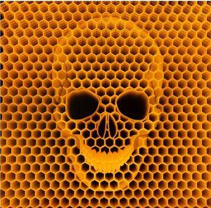 ZMK, 'Bees Die We Die', 2014
