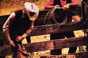 Richard Prince, 'Untitled (Cowboy)', 1980-1984