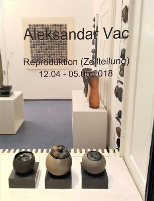 "Aleksandar Vac ""Reproduction (Cell Division), installation view"