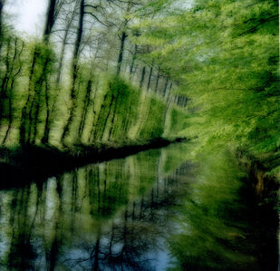 Lynn Geesaman, 'Beloeil, Belgium ( 4-04-39C-11) #3', 2004