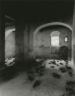 Mimmo Paladino - Senza Titolo, installation view