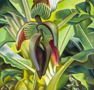 Ross Braught, 'Banana Tree', 1937