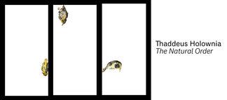 Thaddeus Holownia: The Natural Order, installation view