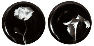 Pair of Porcelain Plates, Cala Lily and Poppy Flower