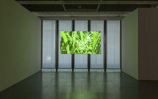 Panoramix, installation view