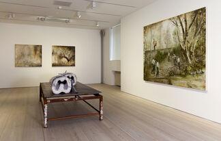 Jarmo Mäkilä: Mirror Neuron, installation view