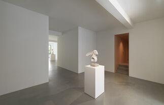 David Altmejd — Rabbits, installation view