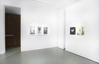 KATHARINA ALBERS - Lithographic Nature, installation view