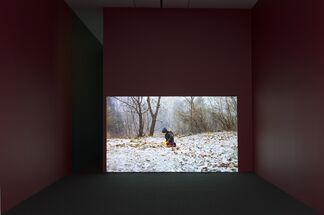Deanna Thompson   Michel Auder    MIXING UP THE MEDICINE, installation view