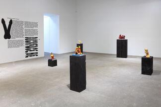 Nicolás Guagnini, installation view