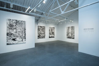Glass Summers, installation view