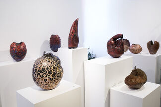 Storytellers: Path to the Known, installation view