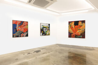 Joshua Nathanson: Symbiotic, installation view