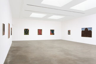 Altered States, installation view