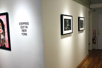 Stepping Out in New York, installation view