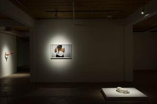 Karine Payette: De part et d'autre, installation view