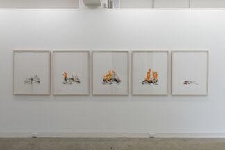Marita Hewitt: Object Lure, installation view