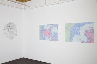 Colleen Wolstenholme, installation view