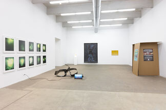 The Radiants, installation view