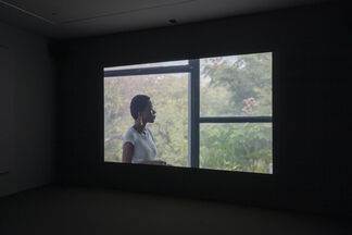 Tandem: Alejandro Cesarco and Tamar Guimarães, installation view