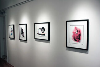 REVEALING MUSES, installation view