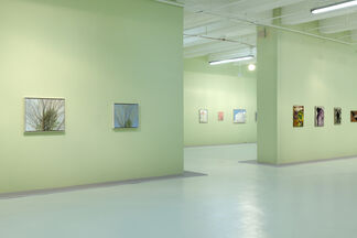 Intimacy in Discourse: Reasonable Sized Paintings, installation view