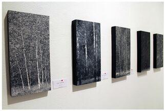 Todd Carpenter // Edward Walton Wilcox, installation view