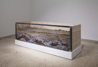 Carlos Martiel: Aislado, installation view