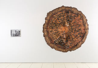 The Bruce High Quality Foundation: Pizzatopia, installation view