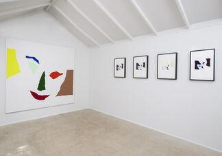 Andrew Gbur, installation view