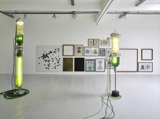 Thomas Feuerstein, installation view