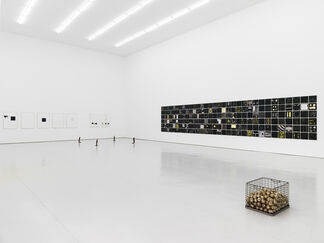 He Xiangyu, installation view