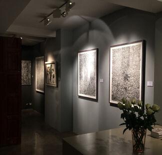 Millefolia, installation view
