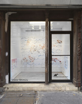Trevor Shimizu, installation view