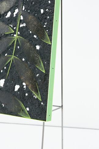 Davide Zucco - Tropisms, installation view