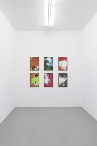 Bernard Voïta   Hétérotopies   Galerie Laurence Bernard, installation view