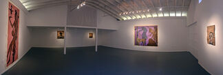 Carlos Fragoso, installation view