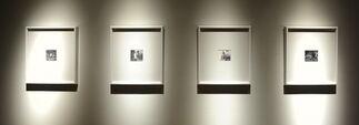 Rasim Aksan, 'Untitled1', installation view