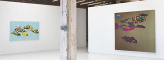 Cornelius Völker, installation view