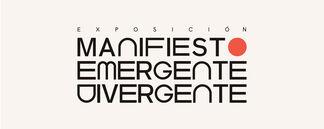 Manifiesto Emergente Divergente, installation view