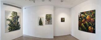Ilan Baruch   Solo Show, installation view
