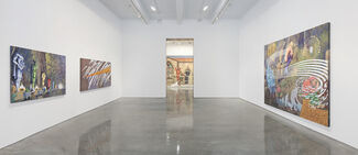 Jim Shaw: Only Wanted You to Love Me, installation view